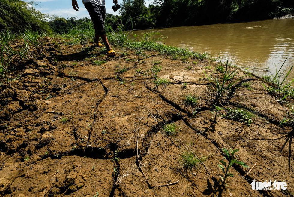 Cát tặc xâm hại Thánh địa Cát Tiên, vắt kiệt cát sông Đồng Nai - Ảnh 11.