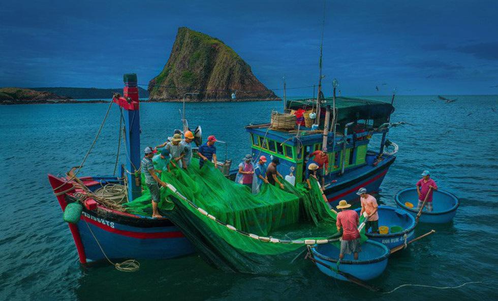 Vũ điệu ra khơi ở Hòn Yến mùa săn cá cơm ngần - Ảnh 3.