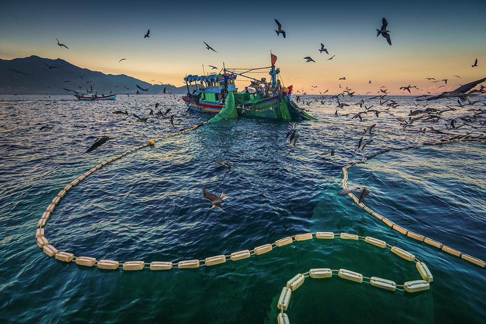 Vũ điệu ra khơi ở Hòn Yến mùa săn cá cơm ngần - Ảnh 6.