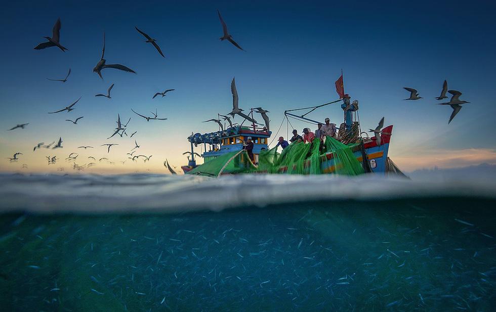 Vũ điệu ra khơi ở Hòn Yến mùa săn cá cơm ngần - Ảnh 7.