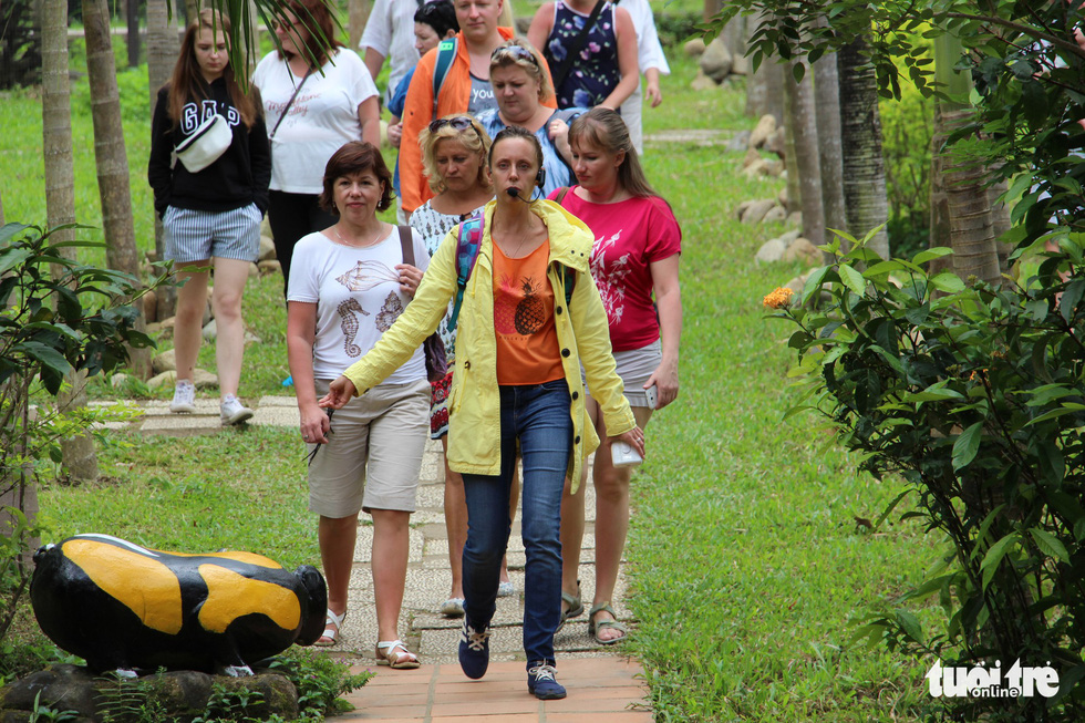 Cuộc đua heo rừng kỳ thú ở Khánh Hòa - Ảnh 2.