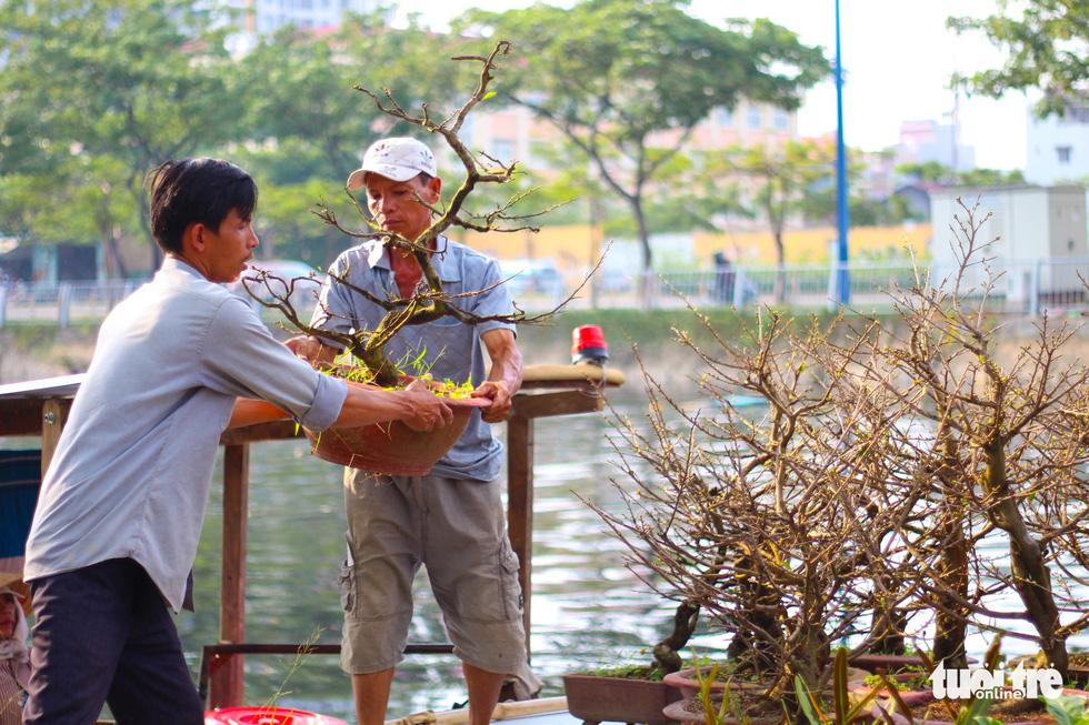 TP.HCM những ngày trên bến - dưới thuyền - công viên ngập hoa, kiểng - Ảnh 10.