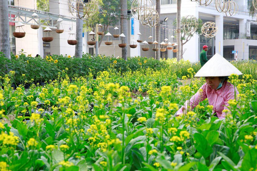 Háo hức khai mạc Hội chợ hoa xuân Phú Mỹ Hưng - Ảnh 2.