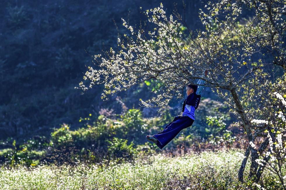 Mùa hoa mận trắng của người Mông bản Phiêng Cành - Ảnh 9.