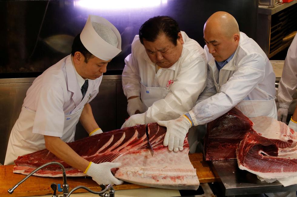 Cả thế giới choáng với 260 triệu đồng mỗi ký cá ngừ - Ảnh 7.