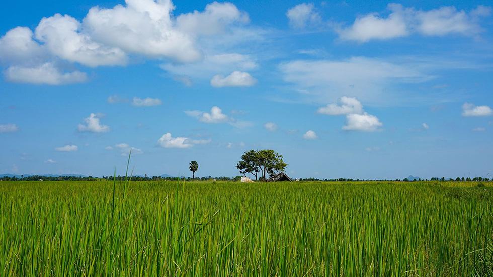 Hà Tiên, thành phố của những cánh đồng xanh - Ảnh 6.