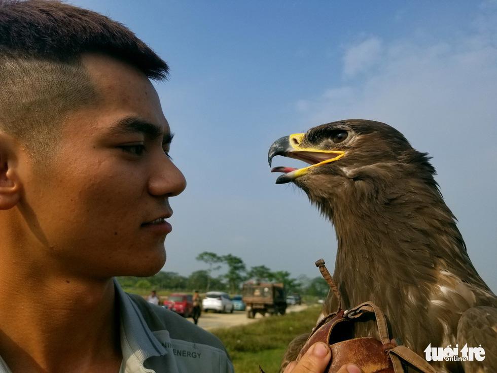 Mãn nhãn với những chú chim săn mồi sải cánh dũng mãnh - Ảnh 6.