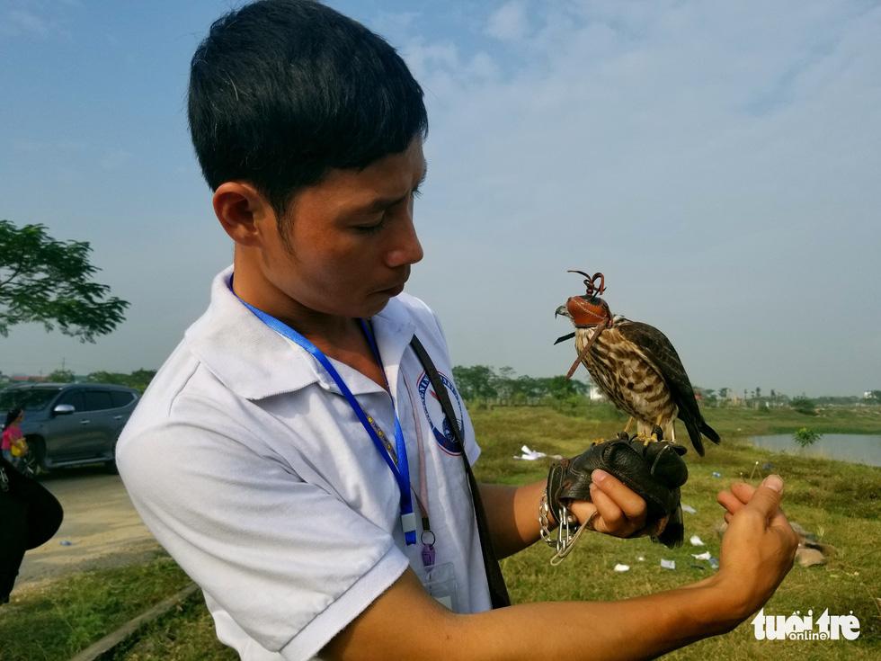 Mãn nhãn với những chú chim săn mồi sải cánh dũng mãnh - Ảnh 3.