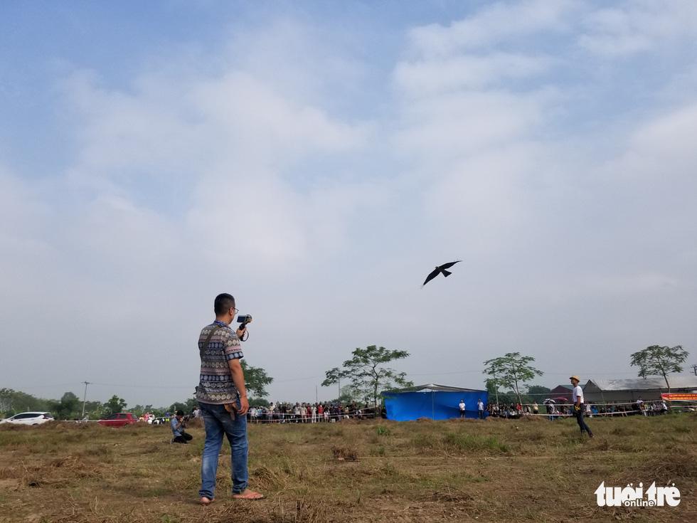 Mãn nhãn với những chú chim săn mồi sải cánh dũng mãnh - Ảnh 12.