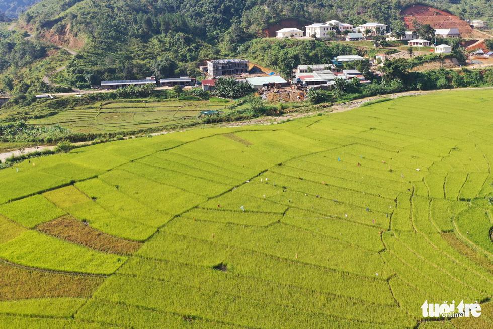 Ruộng bậc thang Chuôr ôm ấp bản làng giữa đại ngàn Trường Sơn - Ảnh 5.