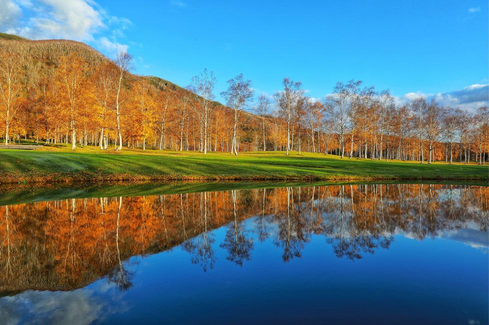 Thu vàng lộng lẫy của Hokkaido - gặp một lần đã là diễm phúc - Ảnh 10.