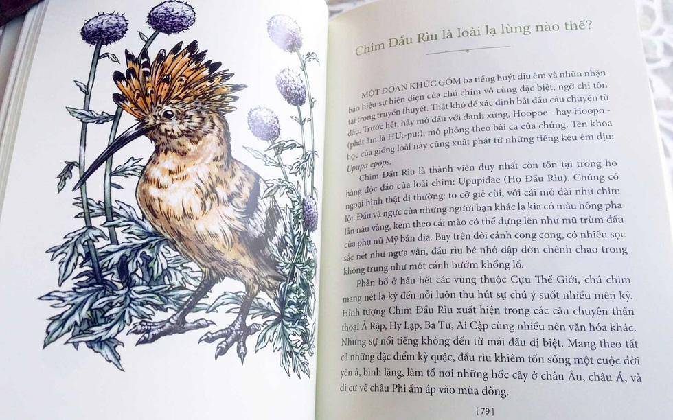 Học gì từ Chuyện kể về trăm loài chim - Ảnh 1.