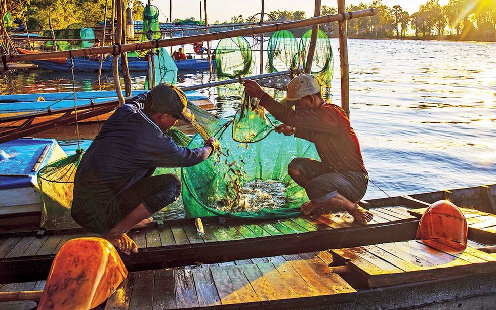 Thương nhớ những mùa cá linh - Kỳ 4: Tìm nguồn cá linh khác - Ảnh 3.