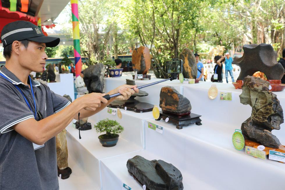 Chiêm ngưỡng những tác phẩm bonsai, suiseki tiền tỉ - Ảnh 7.