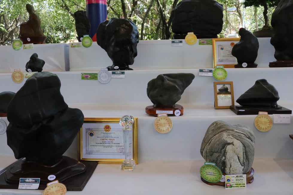 Chiêm ngưỡng những tác phẩm bonsai, suiseki tiền tỉ - Ảnh 10.