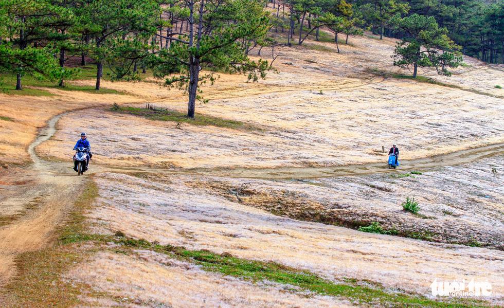 Cao nguyên Langbiang kỳ ảo mùa hội cỏ hồng - Ảnh 9.