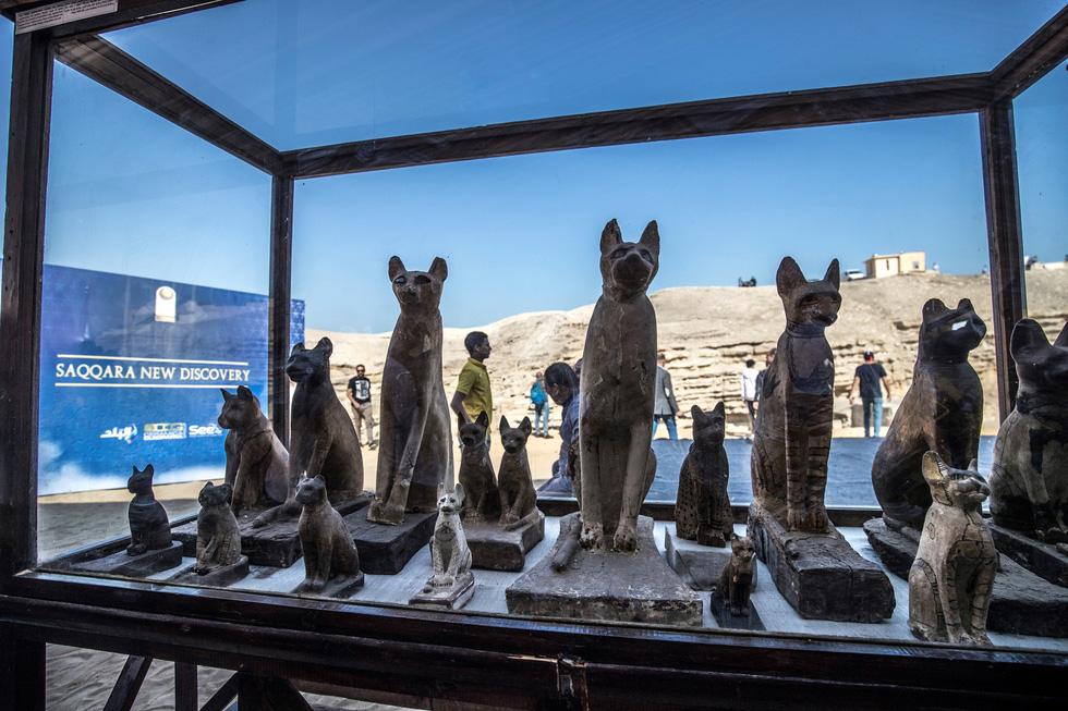 Ai Cập công bố 5 xác ướp sư tử con tìm thấy gần kim tự tháp Giza - Ảnh 5.