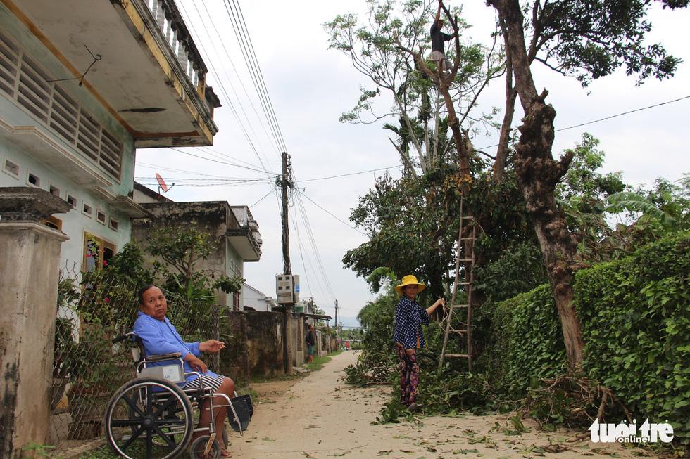 Thủ phủ mai miền Trung đưa mai đi trốn bão - Ảnh 11.