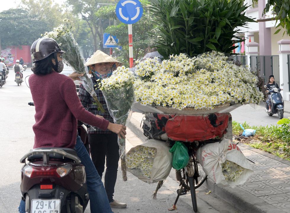 Mùa cúc họa mi nhộn nhịp từ vườn ra phố Hà Nội - Ảnh 18.