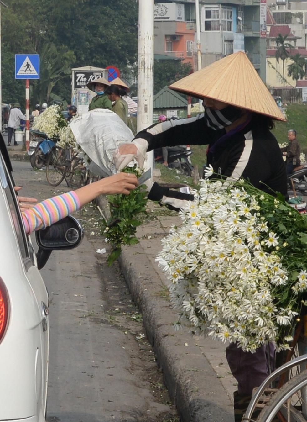 Mùa cúc họa mi nhộn nhịp từ vườn ra phố Hà Nội - Ảnh 19.