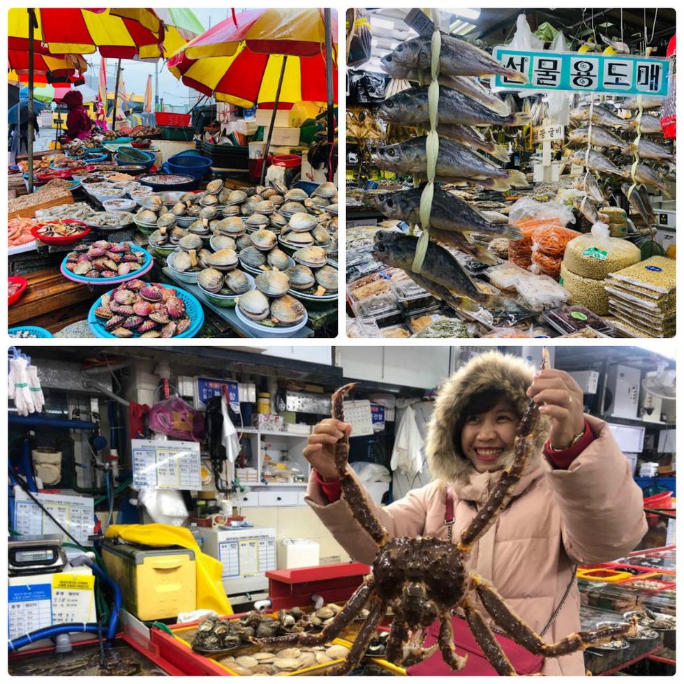 Ngày đông tới Busan thưởng thức hải sản, ra biển cho hải âu ăn - Ảnh 2.