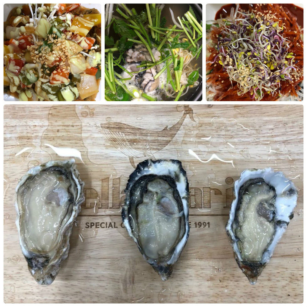 Ngày đông tới Busan thưởng thức hải sản, ra biển cho hải âu ăn - Ảnh 4.