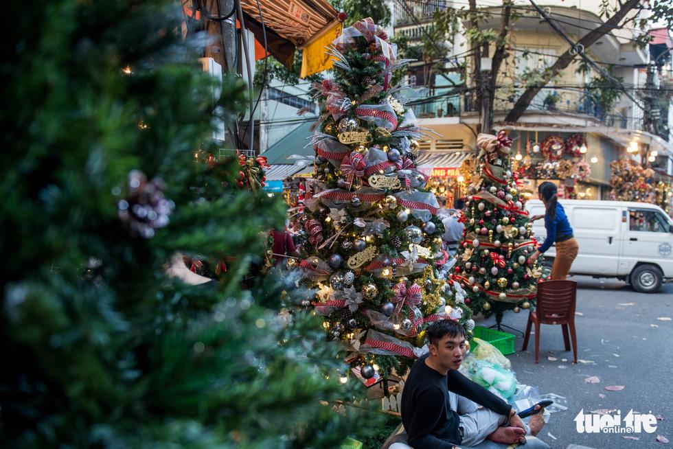 Chơi tới mùa Noel: thông 18-30 triệu vẫn hút khách - Ảnh 3.