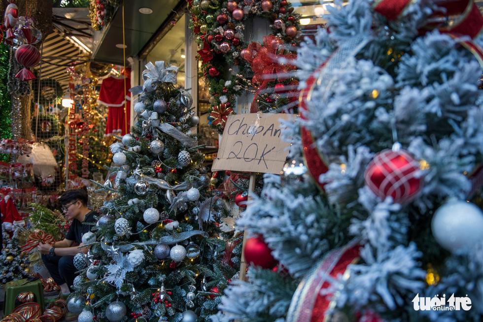 Chơi tới mùa Noel: thông 18-30 triệu vẫn hút khách - Ảnh 10.