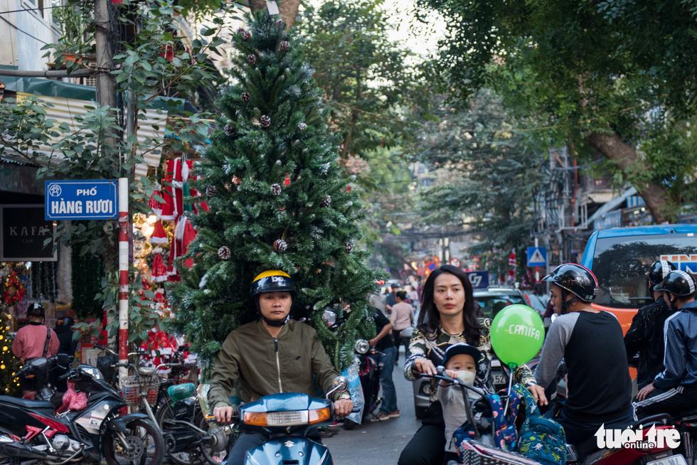 Chơi tới mùa Noel: thông 18-30 triệu vẫn hút khách - Ảnh 9.