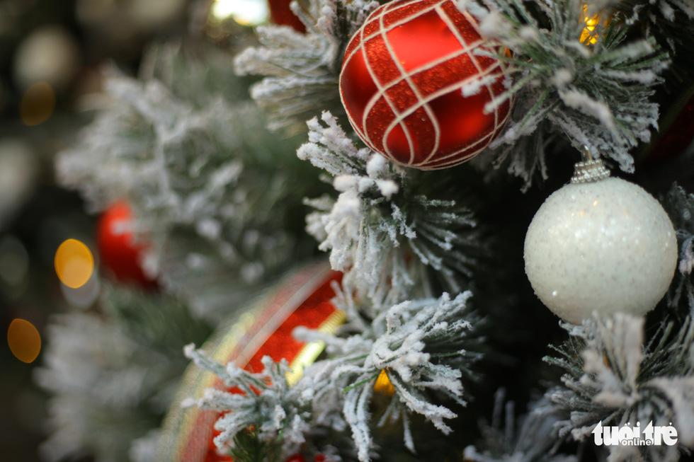 Chơi tới mùa Noel: thông 18-30 triệu vẫn hút khách - Ảnh 6.