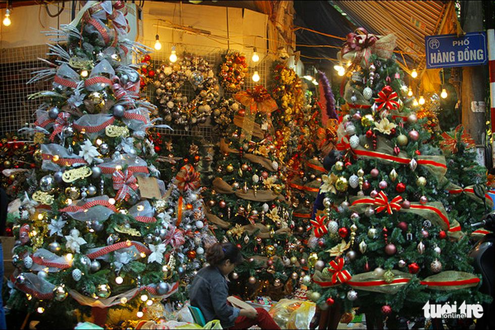 Chơi tới mùa Noel: thông 18-30 triệu vẫn hút khách - Ảnh 1.