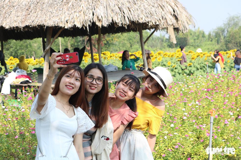 Selfie rực sắc vàng với vườn hướng dương ở TP.HCM   - Ảnh 3.