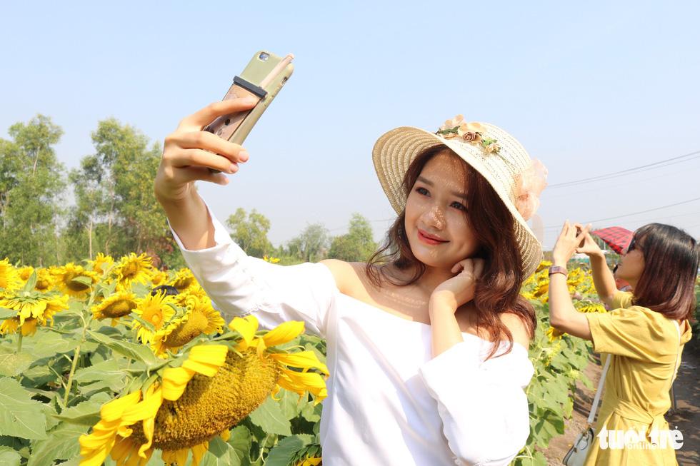 Selfie rực sắc vàng với vườn hướng dương ở TP.HCM   - Ảnh 6.