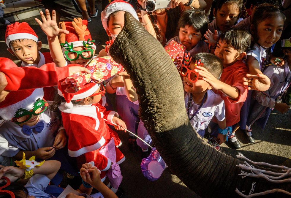 Chùm ảnh: Giáng sinh ấm áp vòng quanh thế giới - Ảnh 2.