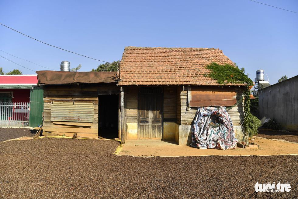 Ngôi nhà phủ hoa chùm ớt ở Lâm Đồng đã không còn - Ảnh 4.