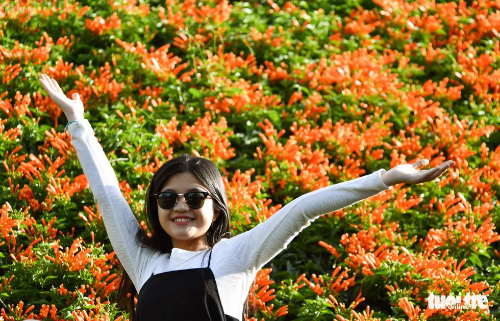 Ngôi nhà phủ hoa chùm ớt ở Lâm Đồng đã không còn - Ảnh 3.