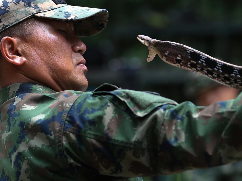 Tập trận Hổ mang Vàng - Bài học rừng xanh cho lính Mỹ - Ảnh 9.