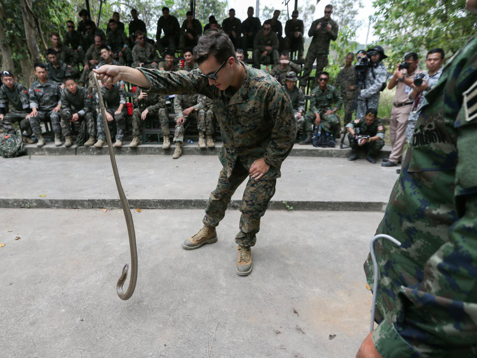 Tập trận Hổ mang Vàng - Bài học rừng xanh cho lính Mỹ - Ảnh 8.