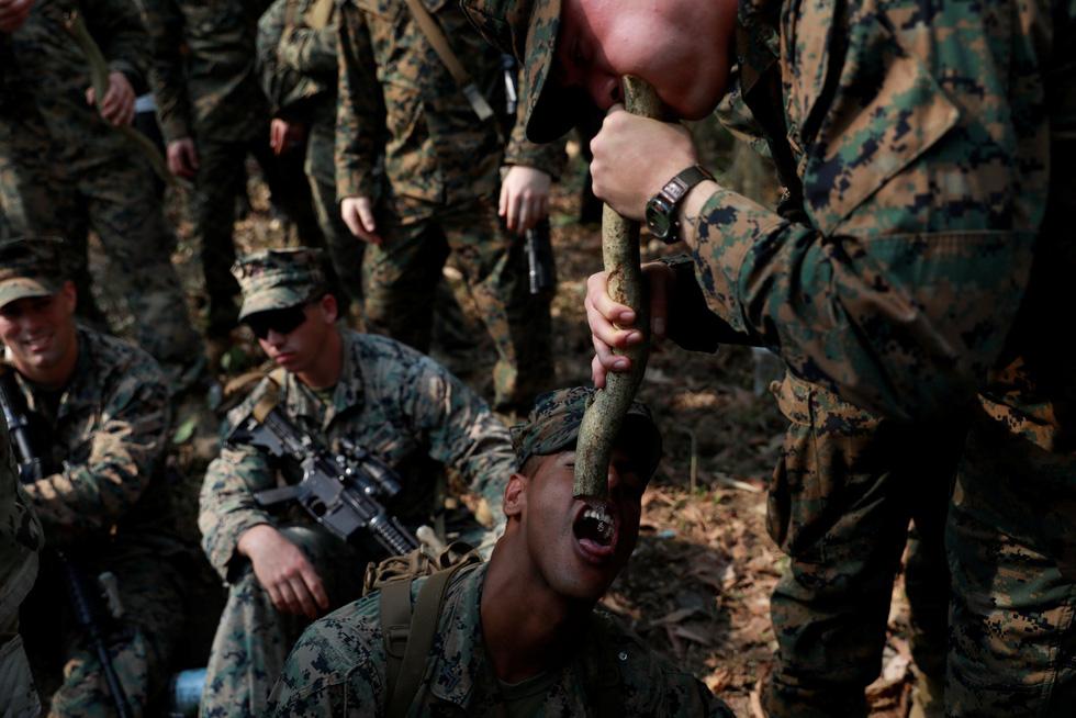 Tập trận Hổ mang Vàng - Bài học rừng xanh cho lính Mỹ - Ảnh 13.