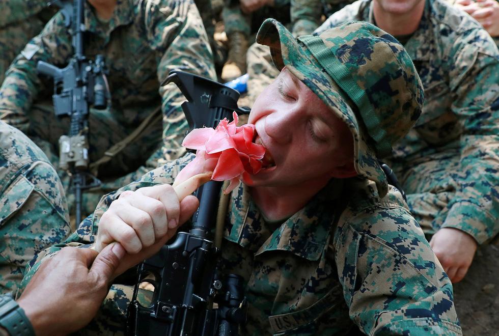 Tập trận Hổ mang Vàng - Bài học rừng xanh cho lính Mỹ - Ảnh 1.