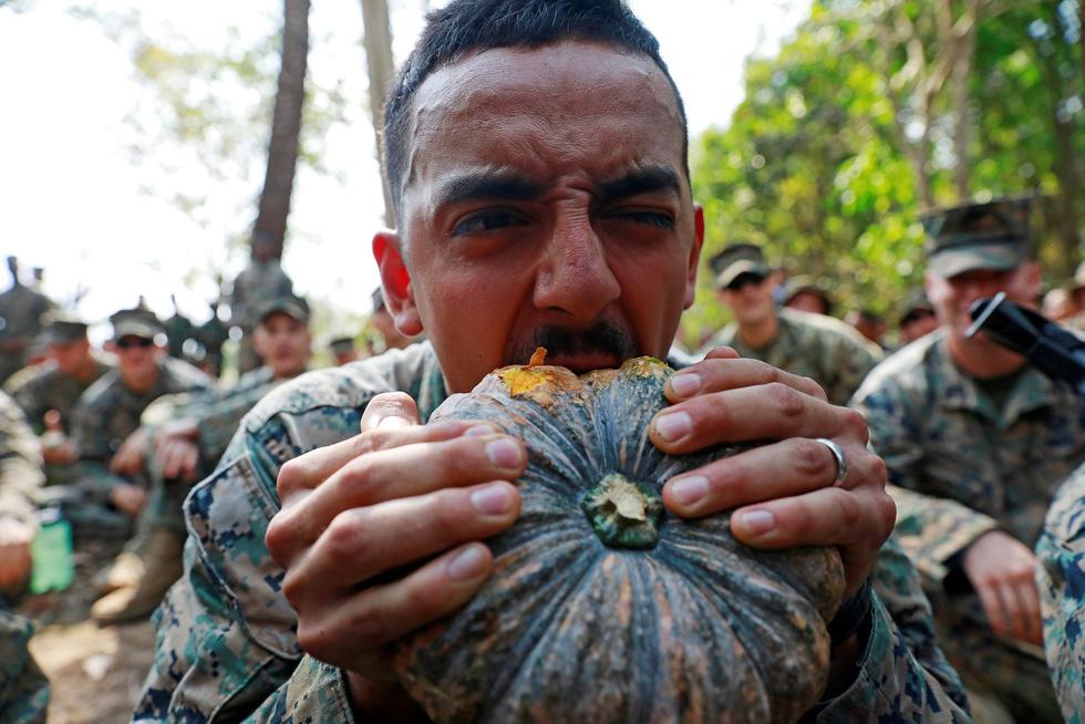 Tập trận Hổ mang Vàng - Bài học rừng xanh cho lính Mỹ - Ảnh 5.