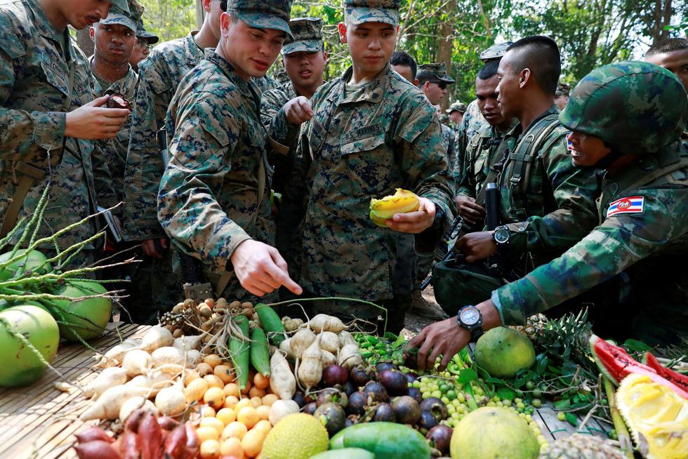 Tập trận Hổ mang Vàng - Bài học rừng xanh cho lính Mỹ - Ảnh 2.
