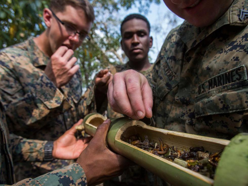 Tập trận Hổ mang Vàng - Bài học rừng xanh cho lính Mỹ - Ảnh 11.