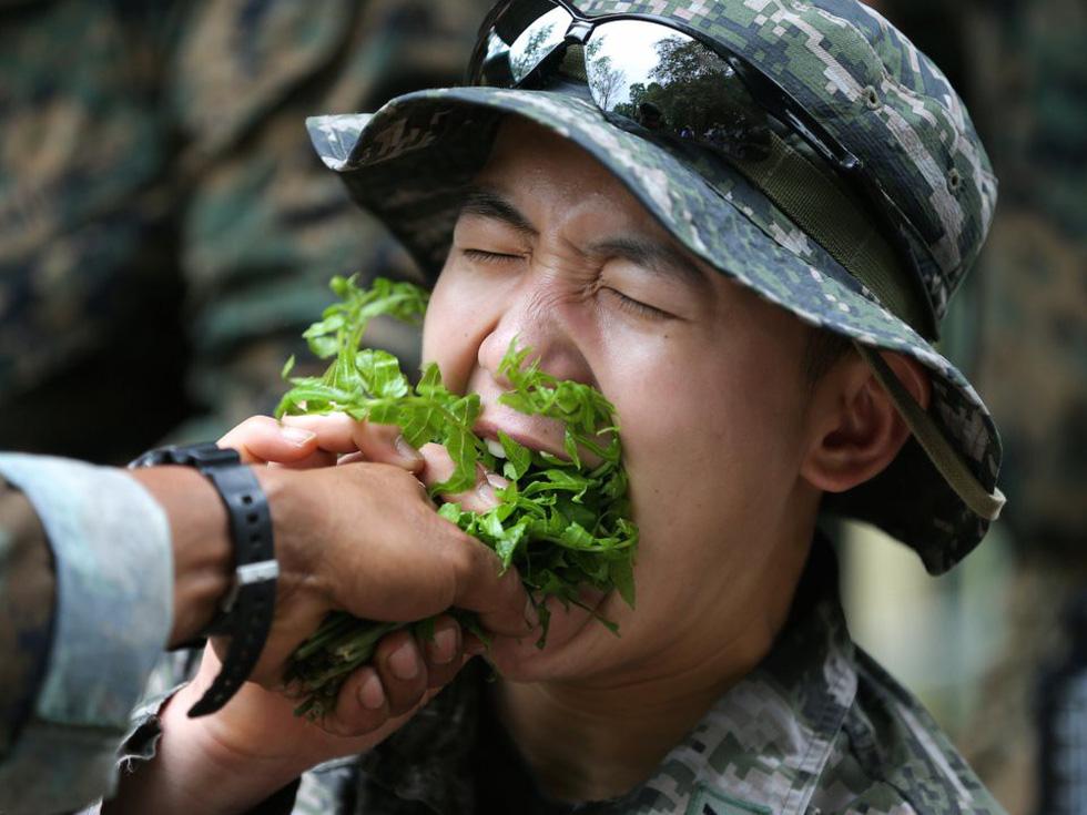 Tập trận Hổ mang Vàng - Bài học rừng xanh cho lính Mỹ - Ảnh 3.