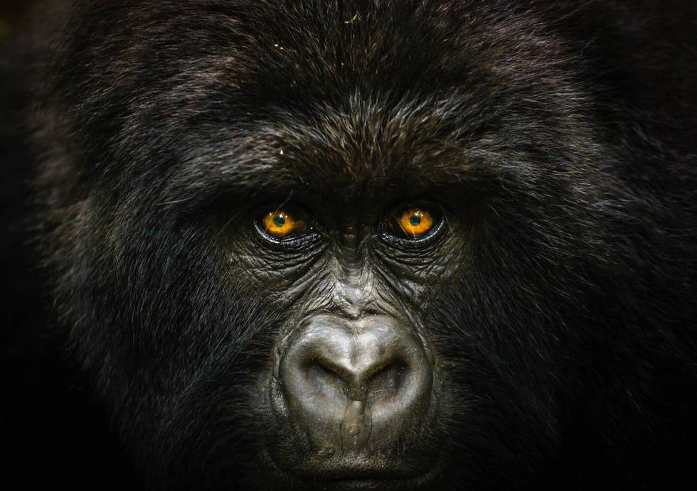 15 ảnh du lịch ấn tượng của National Geographic - Ảnh 1.