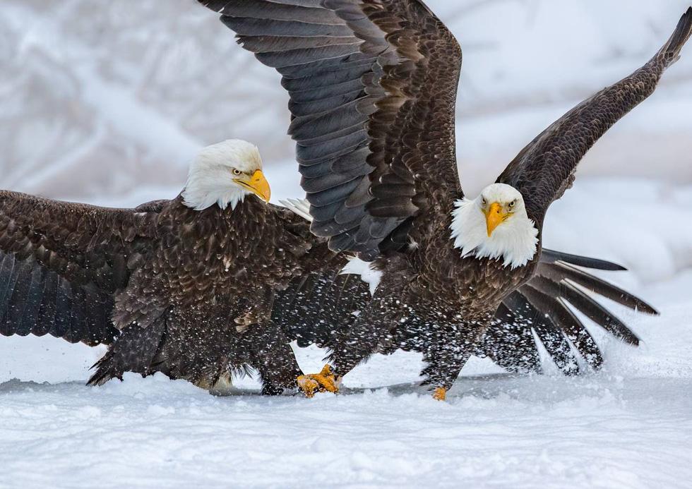 15 ảnh du lịch ấn tượng của National Geographic - Ảnh 2.