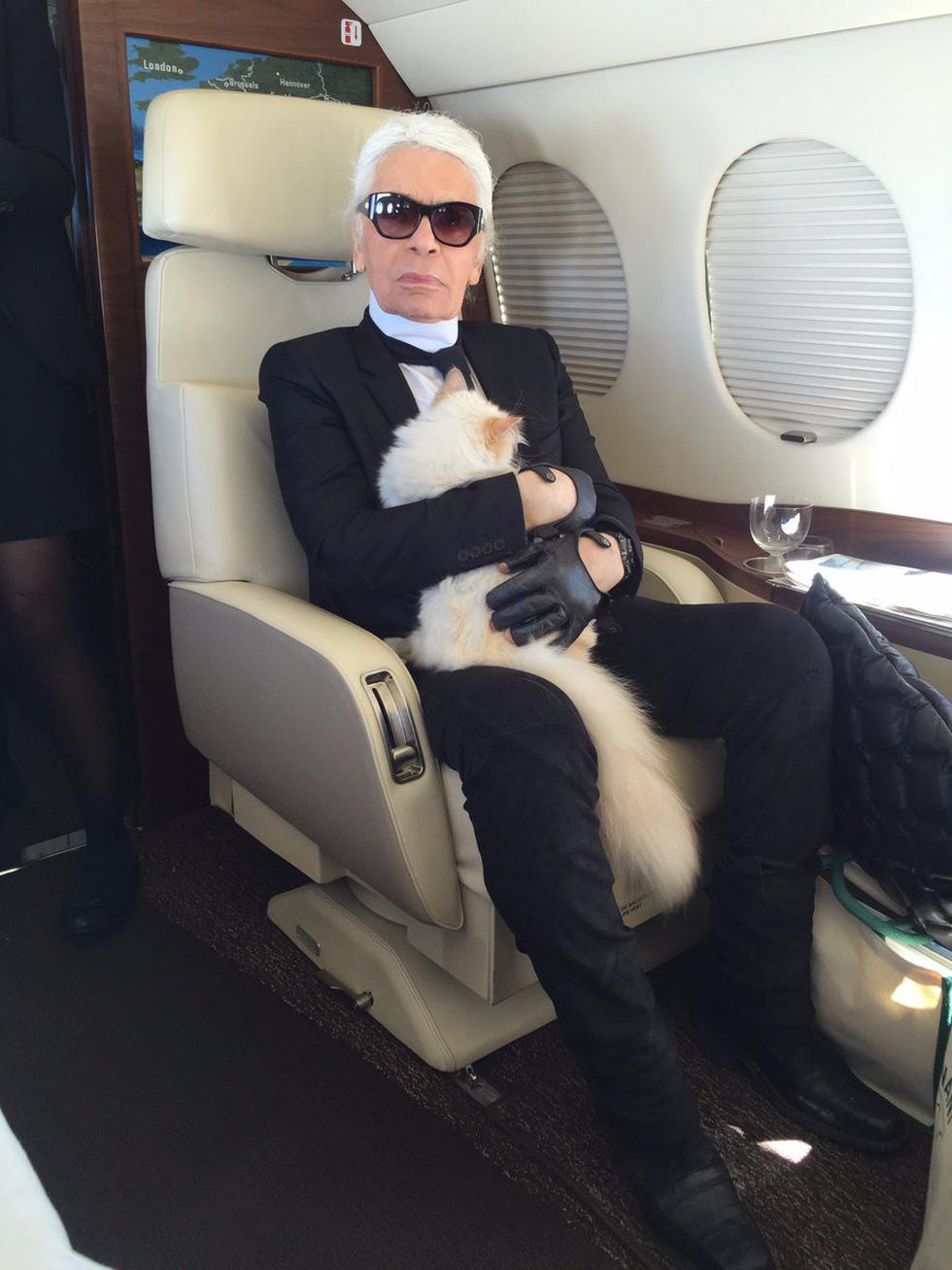 Cô mèo Choupette sẽ thừa kế 200 triệu đô của ông hoàng Chanel? - Ảnh 10.