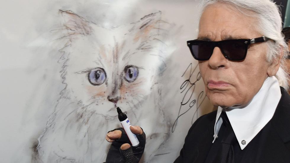 Cô mèo Choupette sẽ thừa kế 200 triệu đô của ông hoàng Chanel? - Ảnh 1.