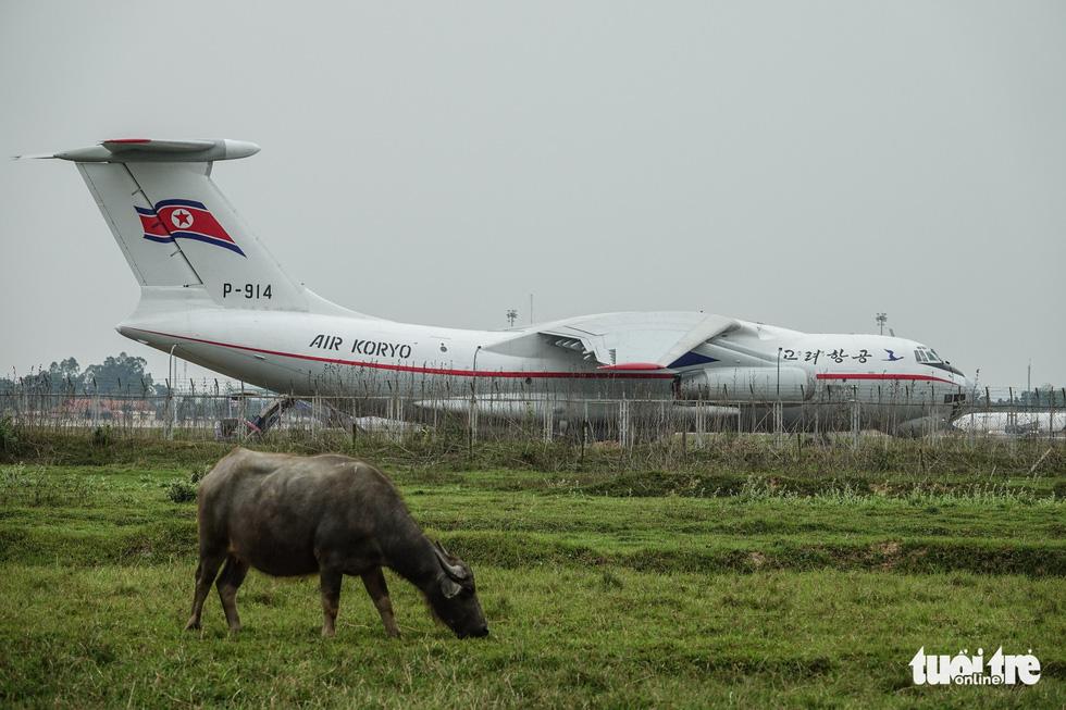 Cận cảnh ngựa thồ Il-76 của phái đoàn Triều Tiên - Ảnh 2.