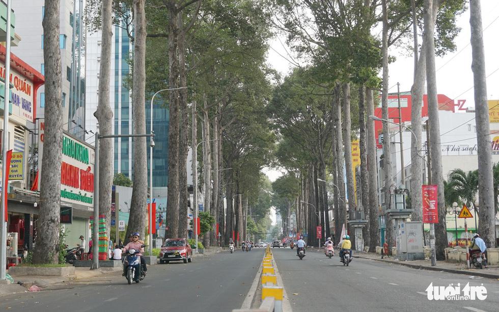 Thành phố ngày đầu năm với những nút giao thông... yên bình - Ảnh 10.